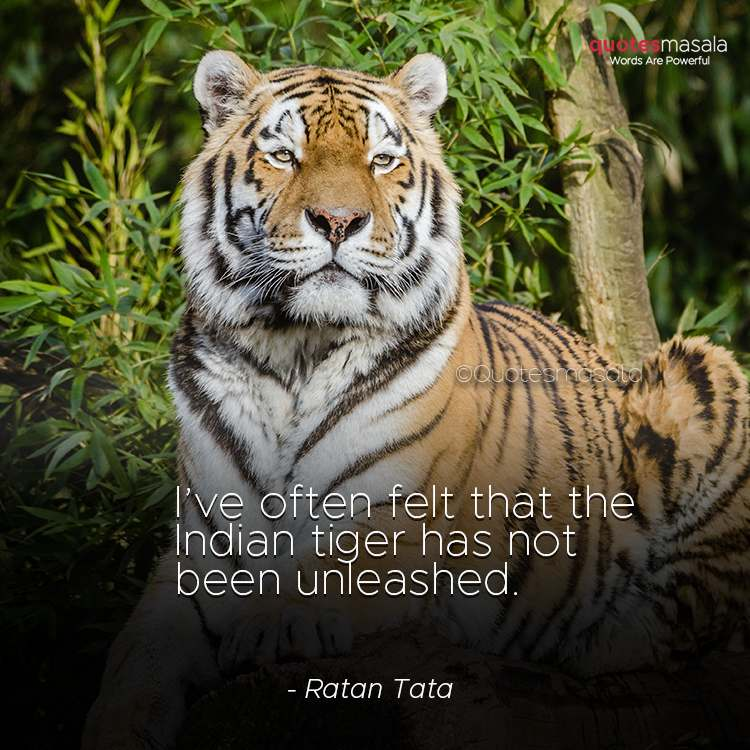 Tiger quotes images for motivation
