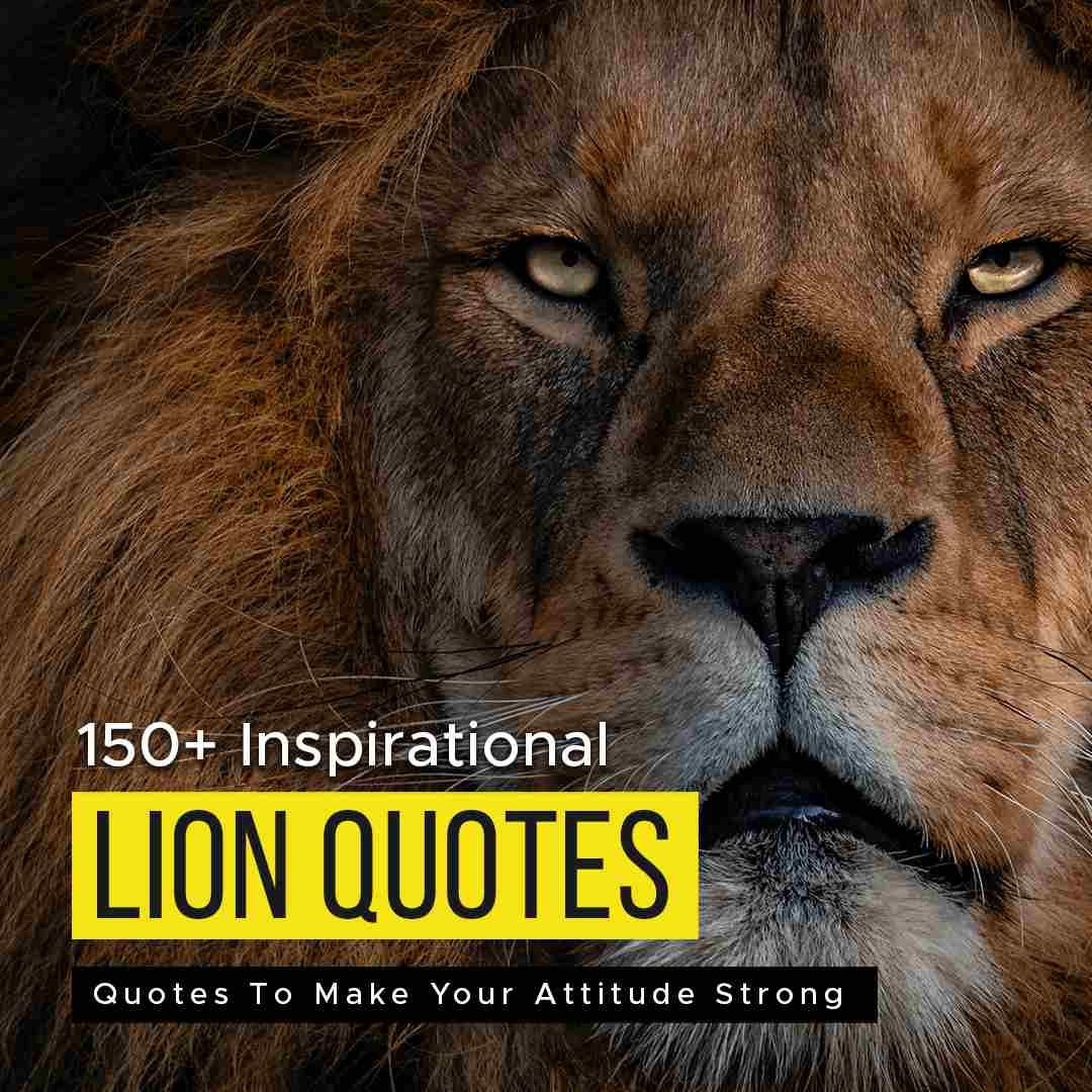 150+ Inspirational Lion Quotes To Make Your Attitude Strong