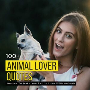 Read more about the article 100+ Animal Lover Quotes To Make You Fall In Love With Animals