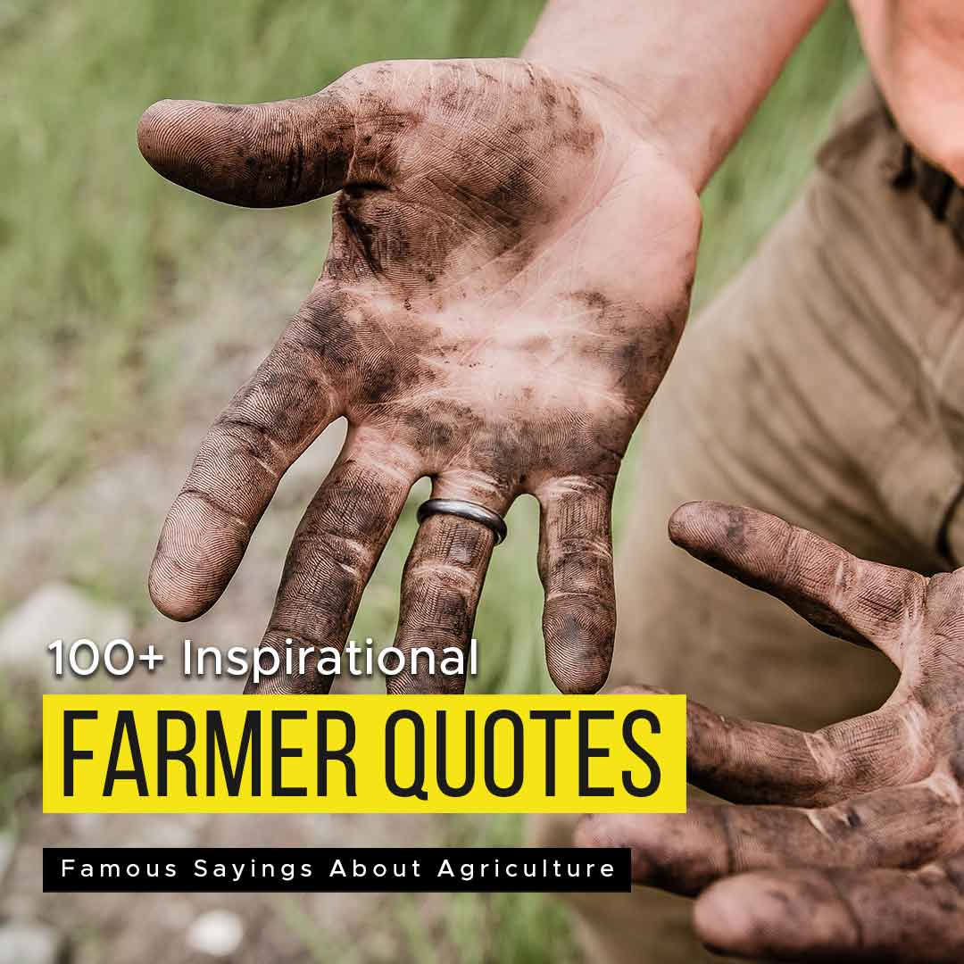 You are currently viewing 100+ Inspirational Farmer Quotes | Famous Sayings About Agriculture