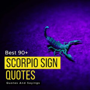 Read more about the article Best 90+ Scorpio Sign Quotes And Sayings You Must Read